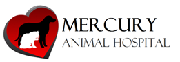 Mercury Animal Hospital